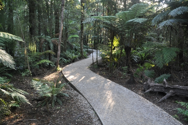 Te Waikorupupu Springs Walkway, Golden Bay, New Zealand