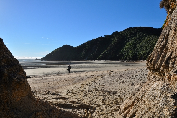Wainui Inlet, Golden Bay, New Zealand